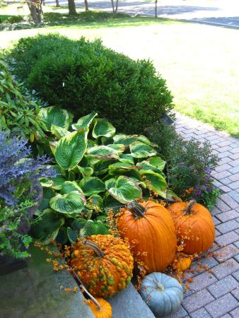 Ivy Tree Inn and Garden : Fall decorations