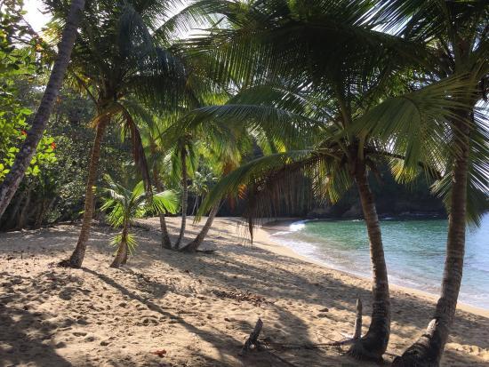 Englishman's Bay: Amazing beach