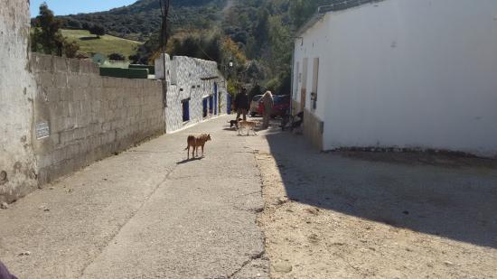 Casa Rural AhORA: alrededores