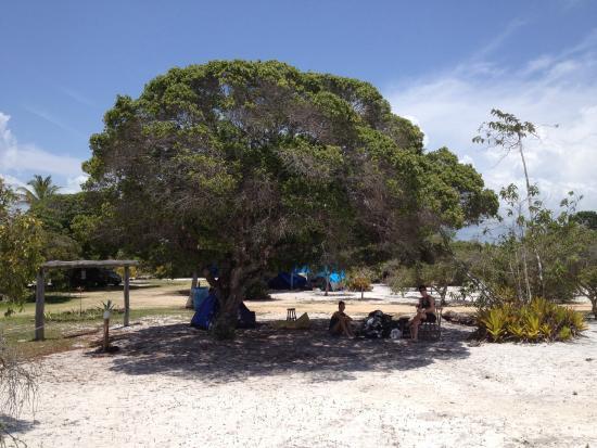 Ponta do Corumbau, BA: área para camping