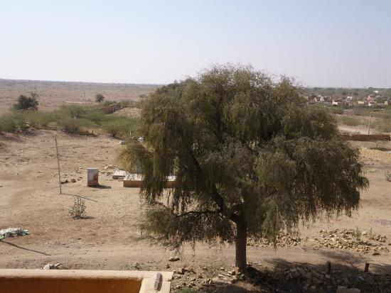 Hotel Nirmal Haveli: Der Blick aus dem Fenster