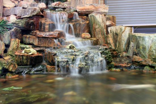 Pond Made From Petrified Wood Picture Of Jim Grays Petrified Wood