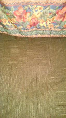 Crystal Cove Riverfront Resort: carpet