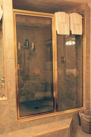 A Vista Villa Couples Retreat: Double headed Rain walk in shower- Royal suite!