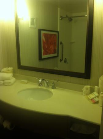 Room - Picture of Hilton Garden Inn New Orleans Convention Center ...