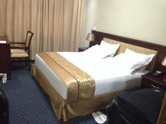 Hill View Hotel & Aparts : bedroom
