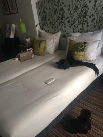 Sevres Saint Germain Hotel : Guest room