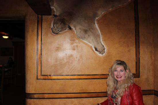 Buckhorn Saloon & Opera House: Here kitty kitty!