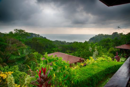 TikiVillas Rainforest Lodge & Spa : View from Villa