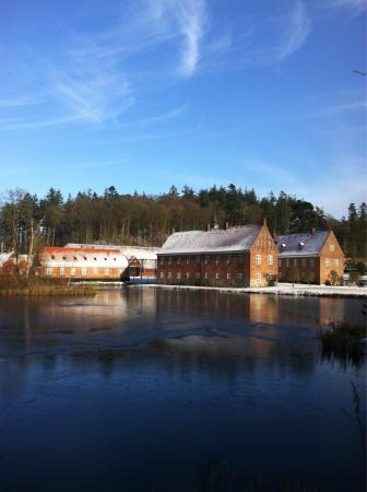 Seafood Restaurants in Vejle