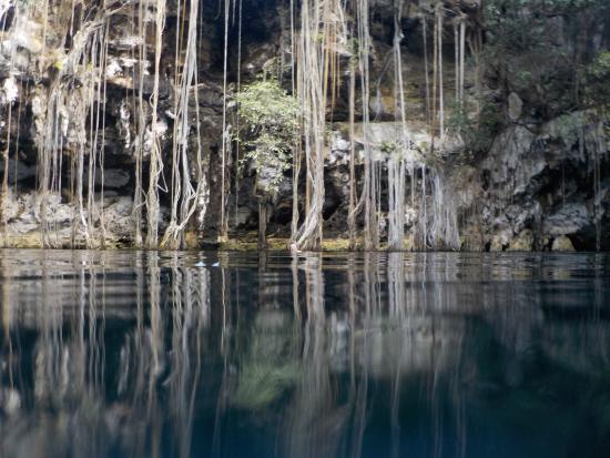 Cenote Yokdzonot : Weird and eerie, beautiful cenote