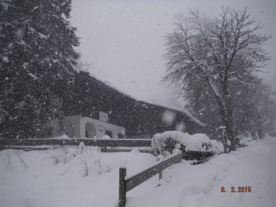Pension Karlberger: View of chalet on snowy day