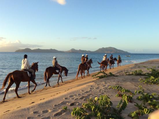 Nevis Equestrian Centre