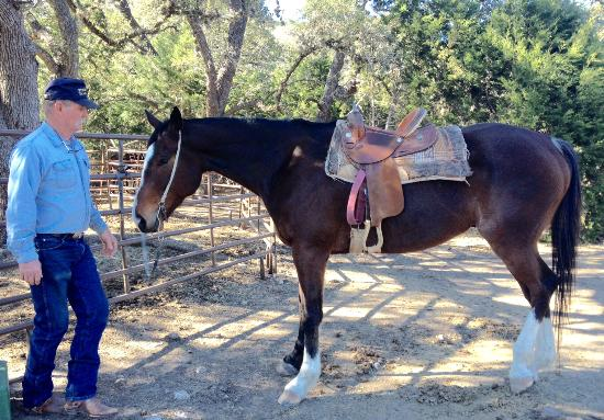 Stricker Trail Rides: Willie and Chrome, who he raised form his breeding stock.