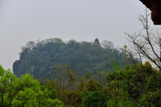 Gulin Zizhou Panorama Resort: Widok z balkonu na zieleń parku i mogot po drugiej stronie rzeki