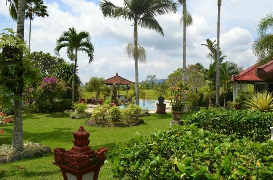 Cabe Bali: Garten