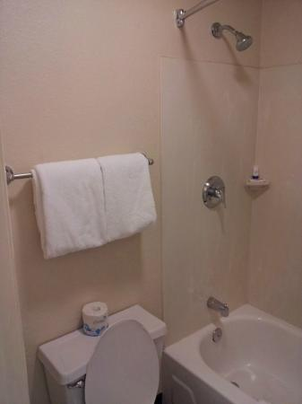 Red Roof Inn PLUS+ Ann Arbor University North: Bathroom Towels, Tp, Soap,