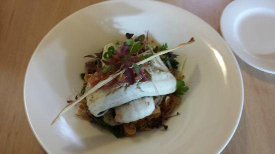 Bella Cafe Restaurant & Pizza Bar: Grilled KI whiting with quinoa & pumpkin salad