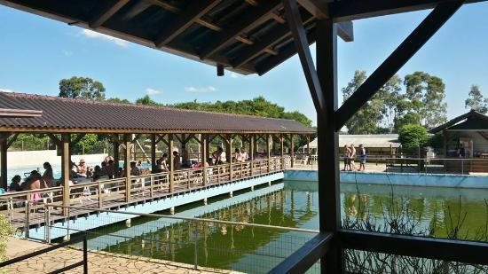 Pousada Parque Robinson : Vista do lago artificial e quiosques