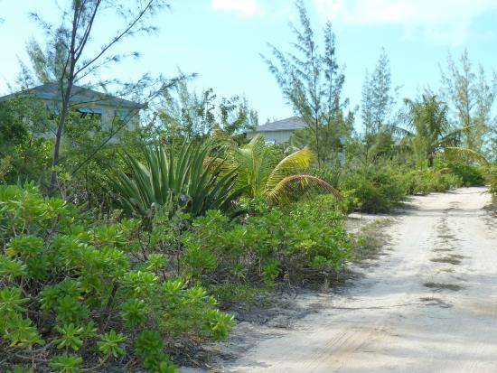 Chez Pierre Bahamas: chemin d'accès