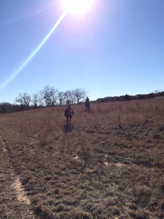 Texas Trail Rides: Riding through the field