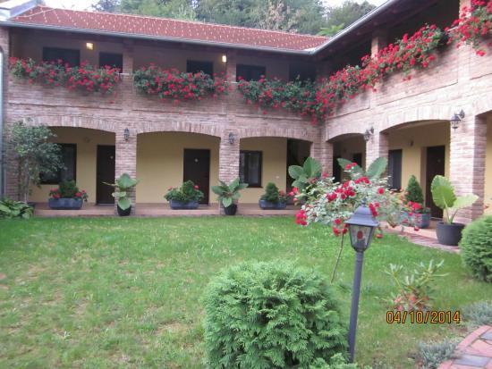 Castle Odescalchi-Museum of Ilok : Pansion Iva