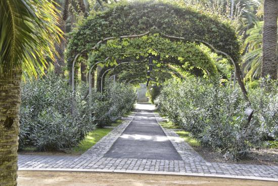 Jard n bot nico tenerife picture of botanical gardens jardin botanico puerto de la cruz - Botanical garden puerto de la cruz ...