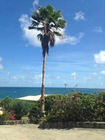Mount Vernon Beach Resort: Ocean views greet you