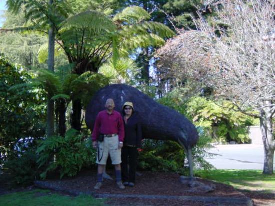 Taupo Bay: Infront of Kiwi