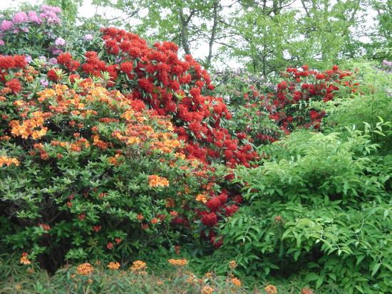 Les Jardins des Renaudies
