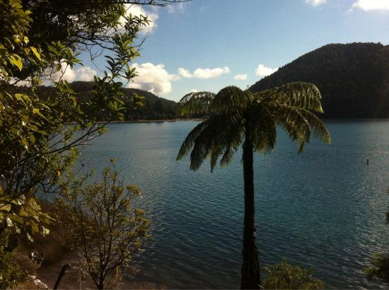 Blue Lake TOP 10 Holiday Park & Motel: Beautiful lake to walk around in an hour and a half
