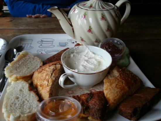 Dr. Bombay's Underwater Tea Party: Tea for 2