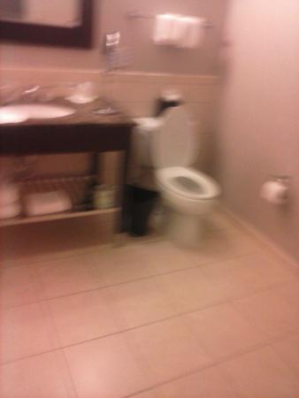 The Westin Richmond: Half of the bathroom (sorry blurry)