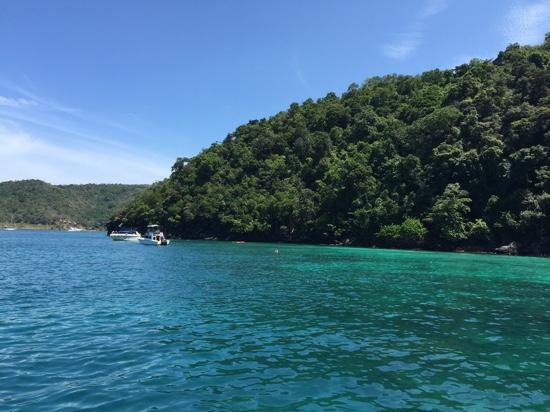 Blue World Safaris: view from boat