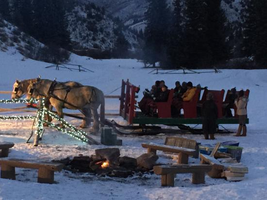 """Bearcat Stables: 25 minute sleigh ride makes two circles in the fields below the """"cabin""""."""
