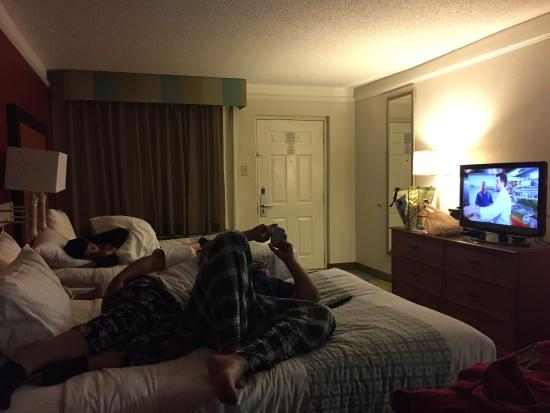 relaxing after a long drive picture of la quinta inn by wyndham rh tripadvisor com