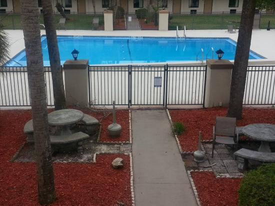 Travelodge Inn and Suites Jacksonville Airport: The Pool