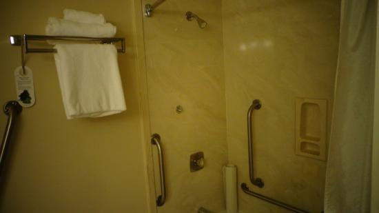 Huntingdon Manor Hotel : Shower is great if you are uneasy getting in/out.