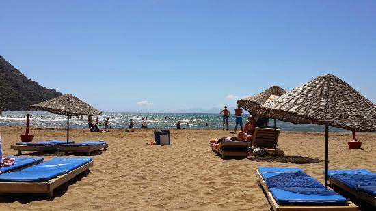 Iztuzu Beach : İztuzu Plajında