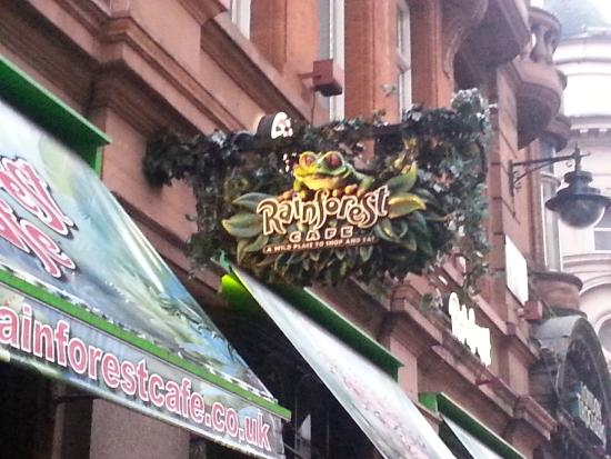 Moving animals picture of rainforest cafe london for Rainforest londra