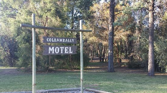 Easy to find just off highway 87 picture of coleambally for Motel one wellness