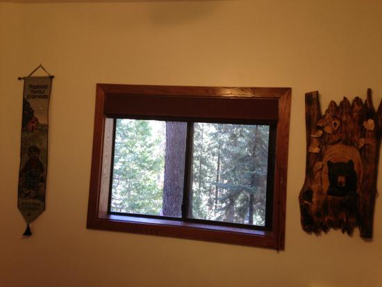 Cozy Bear Cottages: view from bedroom into the woods