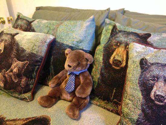 Cozy Bear Cottages: Bears!