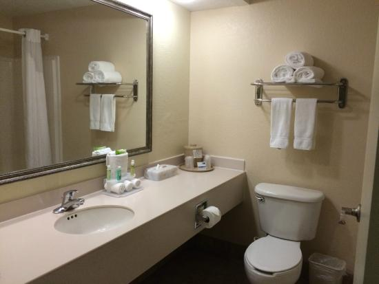 Holiday Inn Express Port Charlotte: Bathroom area