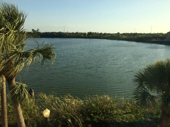 Holiday Inn Express Port Charlotte: View of small lake from the room