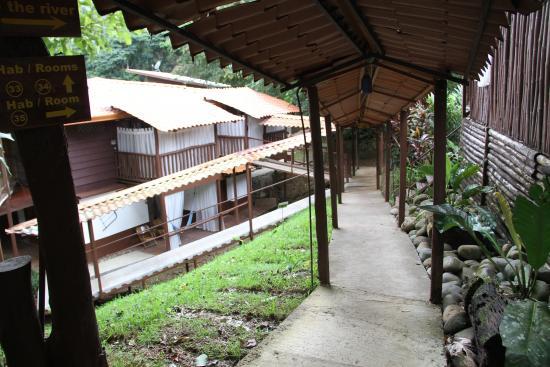 La Quinta de Sarapiqui Country Inn: coursive accès chambre
