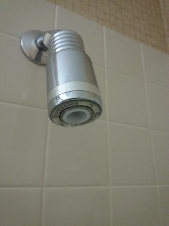 Cristata Inn: Non adjustable shower head.