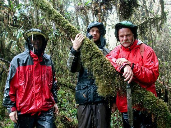 Casa Simpson Lodge: Im Nebelwald von Tapichalaca über der Simpson Lodge