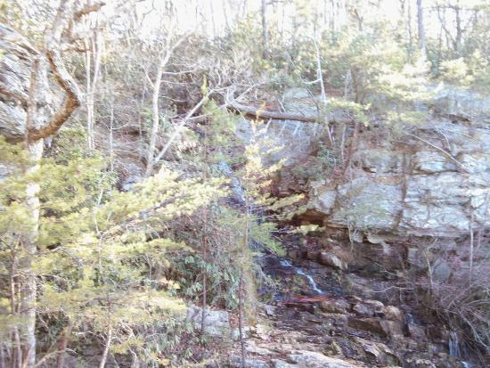 Danbury, Северная Каролина: Tory's Falls