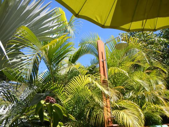 """Rochers Caraibes-Eco Village : """"Zen"""" sur la terrasse du jacuzzi"""